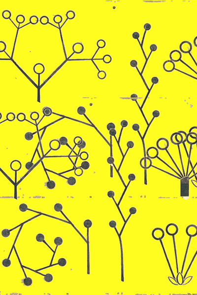 yellow1aa