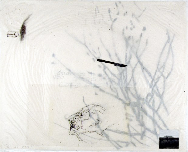 """drawing/interconnection on washi approx 18""""x15"""""""
